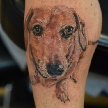 best Dachshunds tattoo