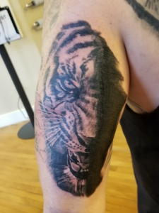Realistic tiger tattoo by Darl Papple