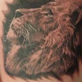 lion portrait best photorealism
